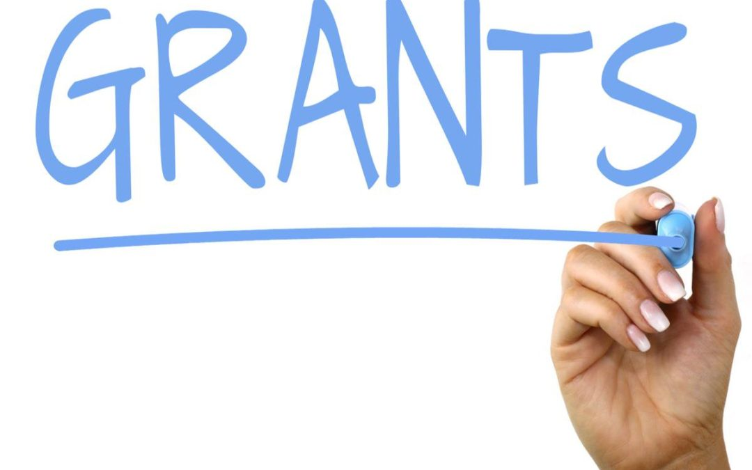 2019-20 Professional Grant Applications